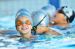 Dolphin Swimming School