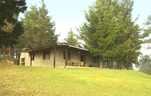 Glen Oakes Farm