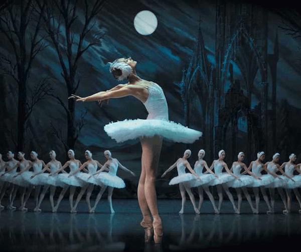 Swan Lake by St Petersburg Ballet